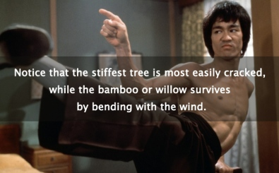 Bruce-Lee-Quote-Notice-the-Stiffest-Tree-is-most-easily-cracked