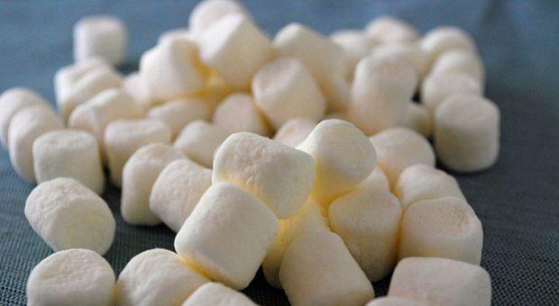 140929_marshmallowtest