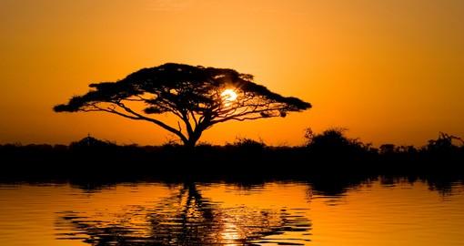 beautiful_african_sunrise_reflected_on_lake_with_backlit_acacia_tree_on_amboseli_natural_park_1_hero