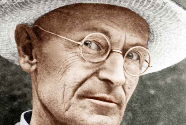 alternative-hermann-hesse-pic